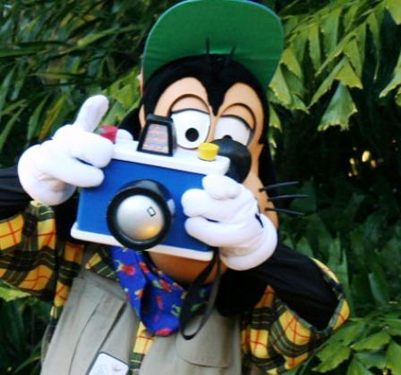 Paparazzi al acecho, las celebridades en video
