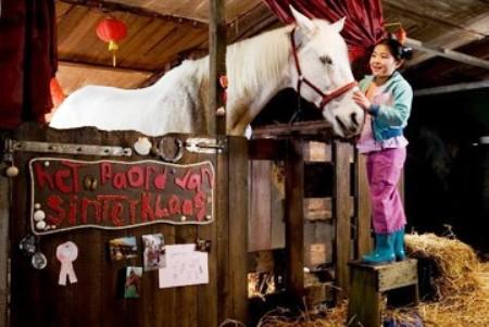 Trailer online de la película «Winky y el caballo mágico», estreno 15 de mayo