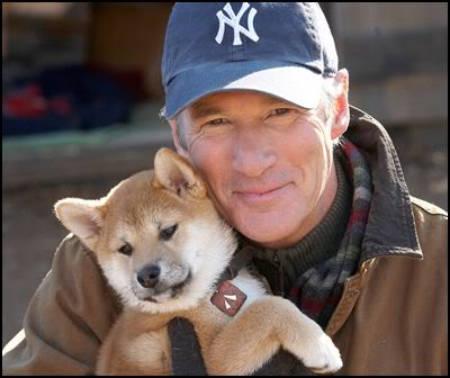 האצי'קו:סיפור של כלב,הסיפור שירגש אותכם