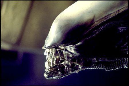 La precuela de Alien se retrasa un año entero
